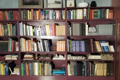 Library of a main character